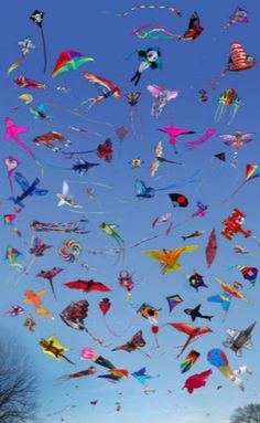 Good Friday with kites everywhere..! In Bermuda they fly kites on Good Friday to represent Jesus on his way to heaven