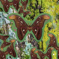 Atlas Moth Nature Vinyl Sticker