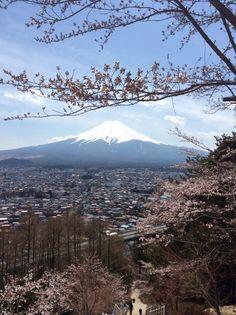 ふじ山は とても きれいな山ですね。うつくしいさくらが 見えたり、大きいみずうみで ジョギングをしたり できます。