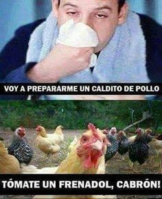 Jajajaja... no jodas!! #memes #chistes #chistesmalos #imagenesgraciosas #humor http://www.megamemeces.com/memeces/imagenes-de-humor-vs-videos-divertidos