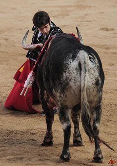 Sebastian Castella , Torero