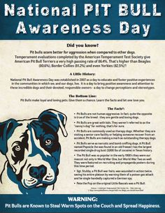 Pit Bull Awareness Flyer