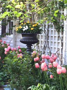 7 Years of Pretty Pink Tulips My Spring, Spring Home, Kips Bay Showhouse, Leontine Linens, Tulip Season, Pink Tulips, Style And Grace, Pretty In Pink, Bloom