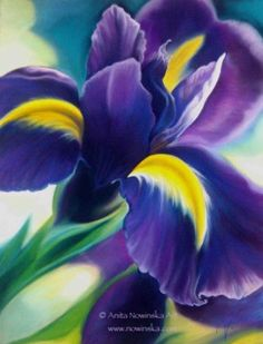 Iris I - Purple Iris, Flower Painting