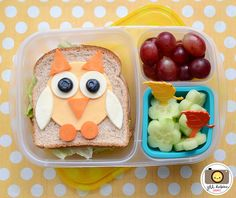 Cute owl school lunch - packed in an @EasyLunchboxes