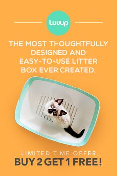 The Litter Box Reinvented. 3 Shifting tray litter system