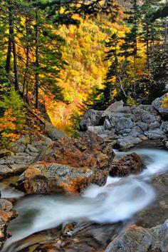 Glen Ellis Falls (New Hampshire) by Joe Z