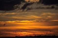 Good night by Rita Caluori Good Night, Celestial, Sunset, Outdoor, Landscapes, Nighty Night, Sunsets, Outdoors, Outdoor Living