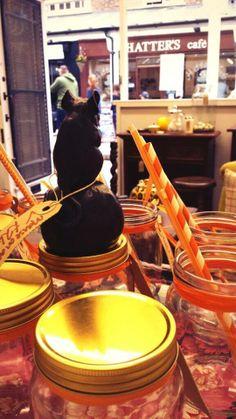 Vintage mouse and jam jar inspirations! Jam Jar, Phoenix, Lion, Guy, Apple, Store, Ethnic Recipes, Vintage, Design