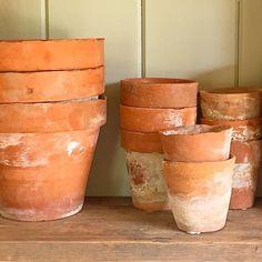 * G O N E - T O - P O T * Old terracotta pots at #hamptoncourtflowershow today... Lovely! #thisperfectmoment #littlestoriesofmylife #vintagestyle