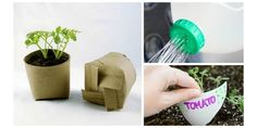 5 Incredibly Clever (And Simple) Earth-Friendly Gardening Hacks