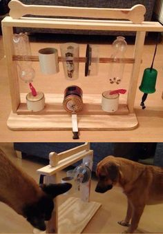 How about building a little #indoor #playground for your #dog? http://www.1-2-do.com/de/projekt/Aktiviticenter-und-Strategiepielzeug-fuer-Hunde-/bauanleitung-zum-selber-bauen/15635/