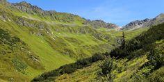 Mountains Grass Tyrol