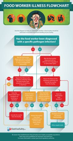 Food Inspiration The Food Worker Illness Flowchart - Food Rings Ideas Inspirations Discover The Food Worker Illness Flowchart Is A Handy Resource For Managers Struggling To Remember What To Do When A Food Worker Reports A Particular Symptom Food Safety And Sanitation, Food Truck Business, Food Handling, Food Technology, Safety Posters, Food Science, Life Science, Food Charts, Eating Organic