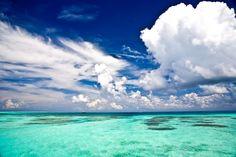 Photo by Elaine Poggi of The Maldive Islands
