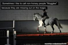 """""""Sometimes I call horse people """"Muggles"""" because they are missing out on the magic."""""""