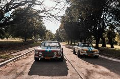 These Are The Argentinian-Built IKA Torinos That Dominated The Nürburgring In 1969 Grand Prix, Automobile, Racing, Building, Cars, American, Argentina, Autos, Car
