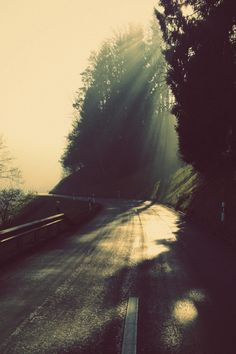 """...rays of sunlight. """"I see the light."""""""