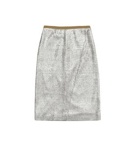 What to buy for AW12: Cos metallic skirt     http://www.elleuk.com/fashion/what-to-wear/elle-s-autumn-winter-12-edit#image=30