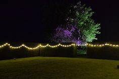 Festoon lights brightening the garden!  www.abbasmarquees.co.uk