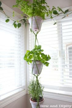 Macrame Plant Hanger - This DIY macrame hanger features three tiers for hanging herbs in your kitchen. Macrame Plant Holder, Macrame Plant Hangers, Plant Holders, Plant Hanger Diy, Crochet Plant Hanger, Hanging Herbs, Hanging Planters, Dyi, Easy Diy