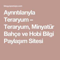 Ayrıntılarıyla Teraryum – Teraryum, Minyatür Bahçe ve Hobi Bilgi Paylaşım Sitesi