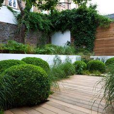 33 beautiful small garden design for small backyard ideas 3 Contemporary Garden Design, Small Garden Design, Landscape Design, Contemporary Landscape, Small Gardens, Outdoor Gardens, Terraced Landscaping, Buxus, Garden Spaces