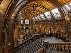 Natural History Museum, London  Photograph by Raymond Choo. My Shot. National Geographic