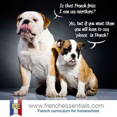 http://www.frenchessentials.com