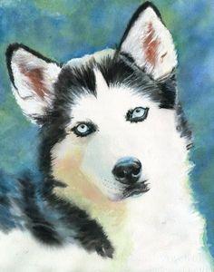 Siberian Husky Dog Art Print of my watercolor by rachelsstudio Siberian Husky Portrait #dog #art #portrait #color #frame