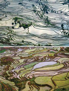 bellezas Terrazas de arroz Yuanyang en Yunnan, China