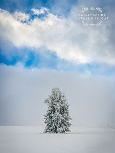 Winter in the Molina Pyreness of Girona Snow Mountain, Winter Snow, Barcelona, Clouds, Cat, Outdoor, World, Fotografia, Outdoors