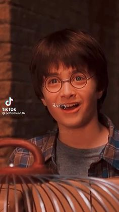 Harry Potter Gif, Magia Harry Potter, Young Harry Potter, Harry Potter Pictures, Harry Potter Universal, Harry Potter Characters, Hogwarts, Harry Porter, Harry Potter Collection