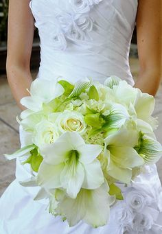 1000 images about white wedding flowers on pinterest for Fleurs amaryllis bouquet