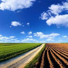 Un agriculteur se suicide tous les deux jours en France