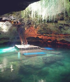 Devil's Den Resort & Springs, Williston, FL. Walk down these steps and take a dip into a top secret pre-historic pool. One of the world's most epic natural dive spots, right here in the USA