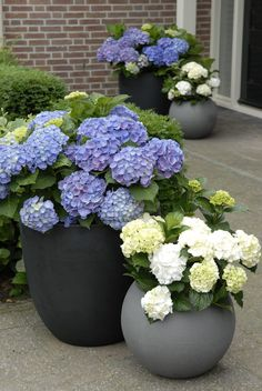 easy and affordable DIY garden pots you've never thought of Architecture designSpring is here, why don't you go out and do something nice for your garden? Make unique DIY garden pots for your plants Diy Garden, Garden Planters, Garden Projects, Balcony Gardening, Front Yard Planters, Front Porch Flowers, Potted Garden, Gravel Garden, Porch Garden