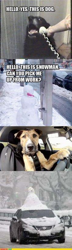Phone Dog