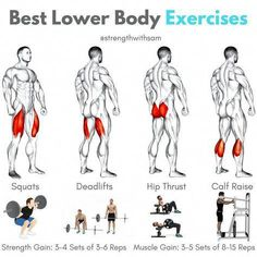 Quadriceps: Squats (Back or Front)Hamstrings: Conventional DeadliftGlutes: Hip ThrustCalves: Standing Calf Raise__Each of these exercises should be included in your lower body training plan for optimal development.__For primaril Gym Workout Tips, Weight Training Workouts, Ab Workout At Home, Fitness Workouts, At Home Workouts, Fitness Motivation, Glute Workouts, Hamstring Workout, Exercise Cardio
