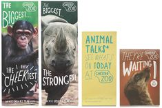 Manchester-based design studio Music has just completed the rebranding of Chester Zoo. The new brand identity centres on a bespoke handdrawn typeface and logotype, created in collaboration with illustrator Adam Hayes. Kids Branding, Branding Design, Wildlife Week, Zoo Tickets, Zoo Logo, Kids Zoo, Chester Zoo, Leaflet Design, Creative Review