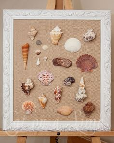 Framed Seashell Display...making this for my bathroom! Thanks Nivia :)