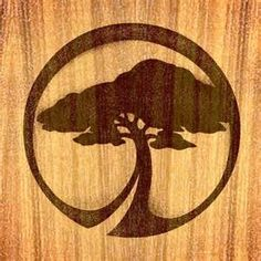 "Tree Logo Idea. Large OWC underneath with ""optimal wellness center"" in ..."