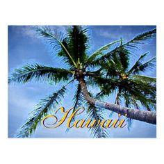 Hawaiian Palm Trees Postcards