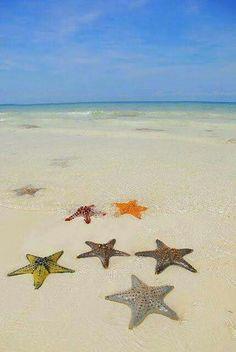 Dónde viajar en diciembre que haga calor: 10 Mejores Destinos de Playa