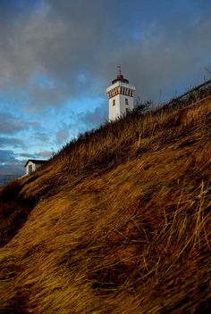 Lighthouse Painting - Helnaes Lighthouse by Robert Lacy Kingdom Of Denmark, Lighthouse Painting, Beacon Of Light, Odense, Copenhagen Denmark, Small Island, Lighthouses, National Parks, Around The Worlds