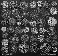 SISTEMA GRANDE Pizarra flores clipart mano dibujado flores