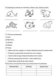 6º) Classifique os animais em mamíferos,anfíbios, aves, répteis e peixes.  7º) Enumere corretamente:  (1) Aves  (2) Mamíferos...