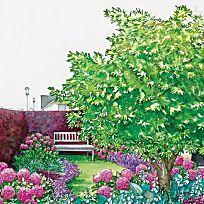 Vorgarten zum Träumen