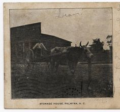 Storage House, Palmyra, N.C. :: North Carolina Postcards