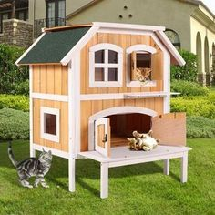 Tucker Murphy Pet Pickell Portable Outdoor Cat Cage With Door Wayfair Cat House Plans Outdoor Cat House Outside Cat House
